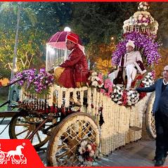 groom on flower chariot (1)