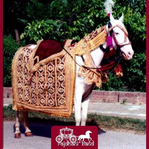 decorated ghori